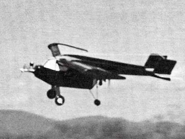 Swine Flew - 11242