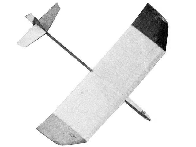 Mini Whippet - 11268