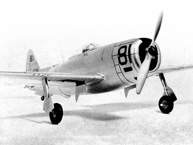 Republic P-47 Thunderbolt - oz11302