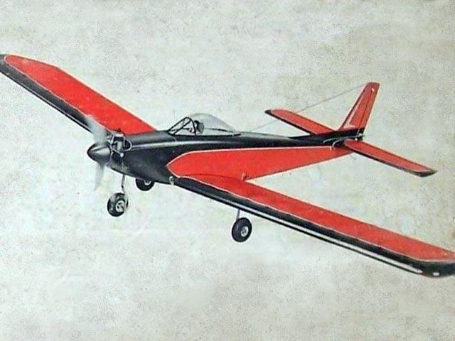 Skylark 56 (oz11620) from Carl Goldberg