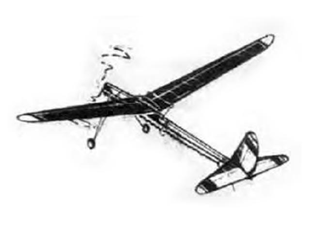 Firefly - oz11656