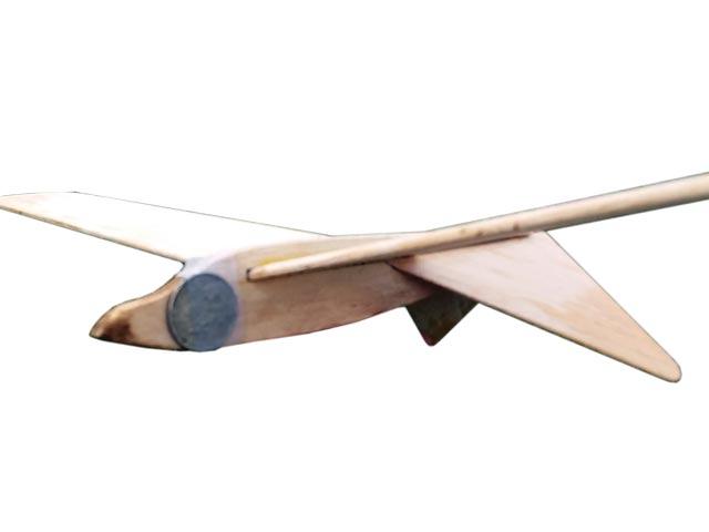Corona Hawk (oz12047) by Andy Kunz 2020