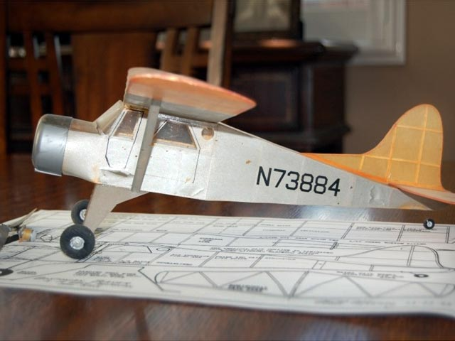 Bostonian Beaver (oz12051) by Walt Mooney from Model Builder 1983