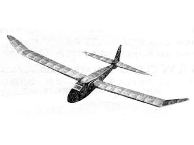 Swallow - 12425