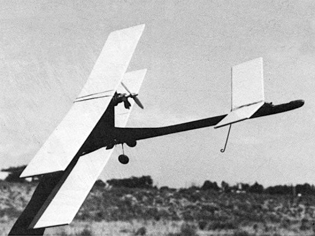 Wings - 12500