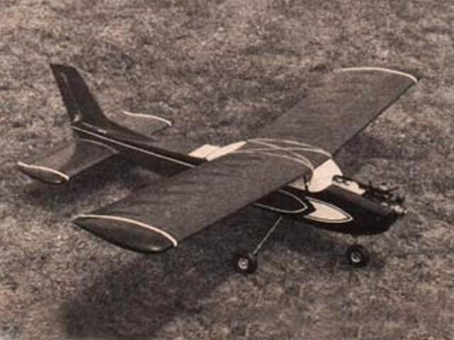 Jr Sky Squire  - 12501