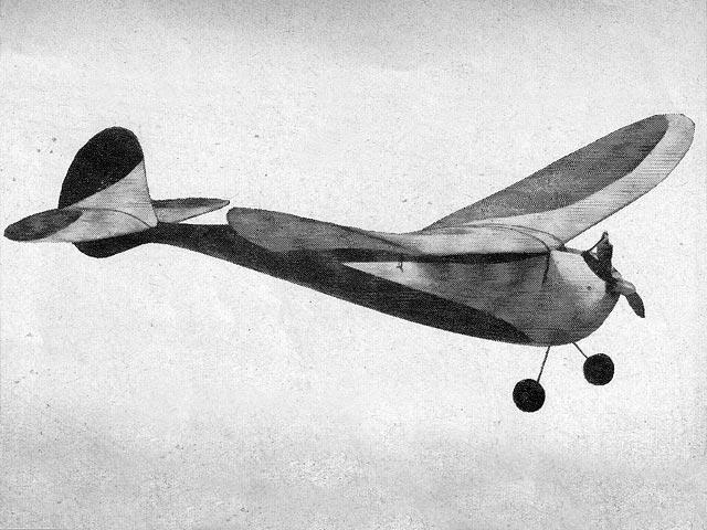 C-Raider - 12981