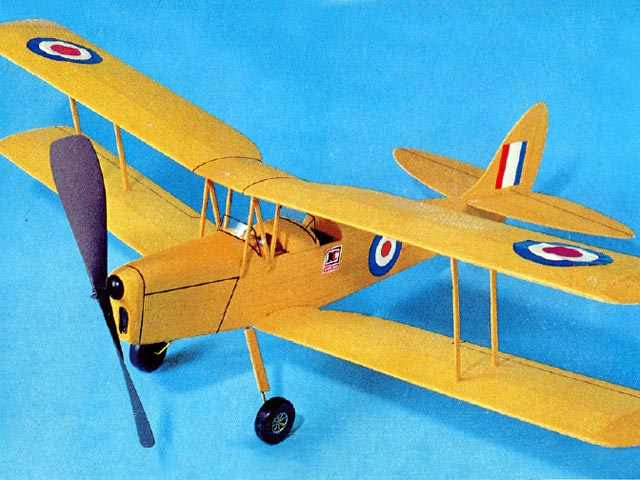 Tiger Moth - 13059