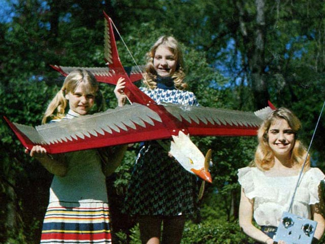 Screaming Eagle (oz13182) by Van Twelves from Model Airplane News 1976