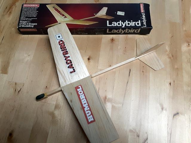 Ladybird - oz13238