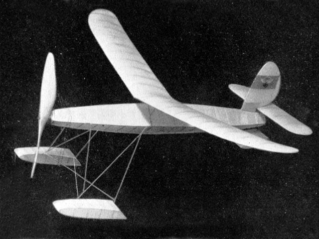 Seeadler - oz13266