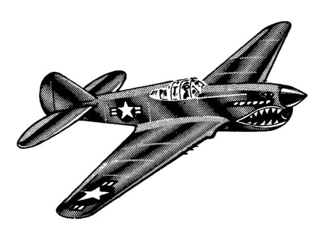 P-40 Warhawk (oz13377) by Paul Del Gatto from Scientific