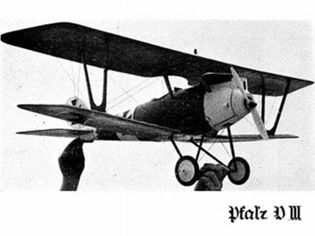Pfalz DIII - completed model photo