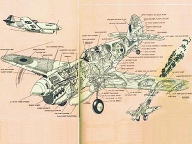 P-40E Kittyhawk (oz1938) by Walt Musciano from American Modeler Annual 1963