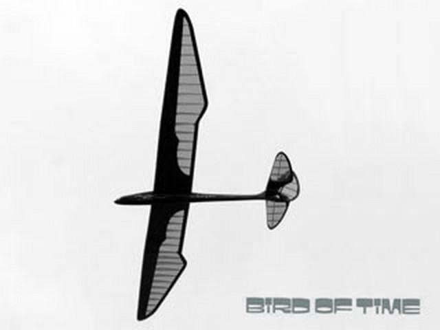 Bird of Time (oz2093) by Dave Thornburg from RCMplans 1979