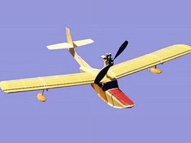 Pond Baby (oz2233) by Dave Robelen from Model Airplane News