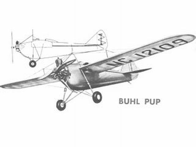 Buhl Pup (oz239) by Henry Struck from Berkeley 1955