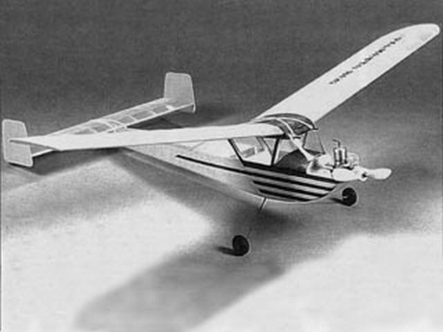 Palmetto Bug (oz2573) by Dave Platt from Aeromodeller 1990