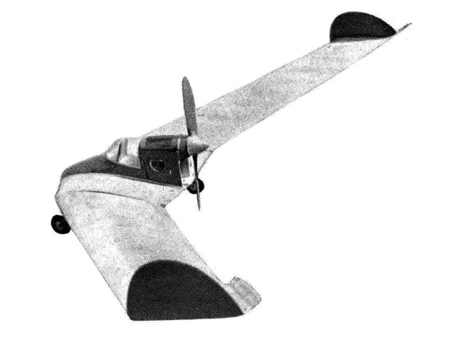 World Tailless Record Holder - completed model photo