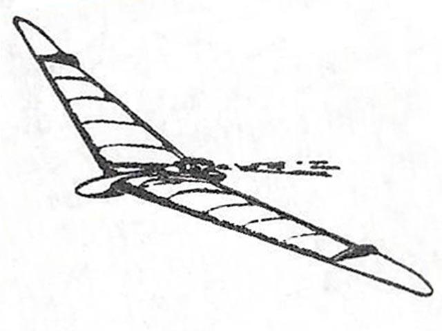 Jetex Flying Wing 2008 (oz3492) by Steve Bage 2008