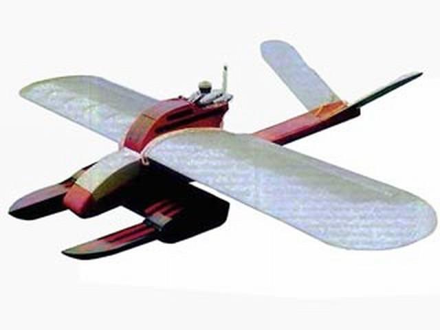 Damsel Fly (oz4384) by John Rutter from Radio Modeller 1992