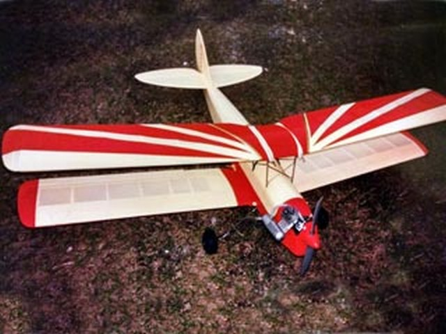 Tiger Moth (oz5189) by DE Foster from Bee Gee