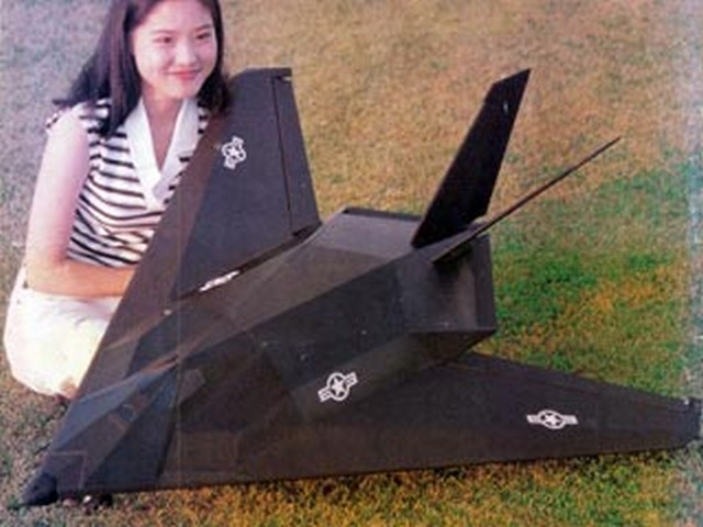 F-117A - completed model photo