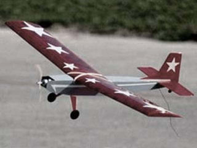 Prowler (oz7566) by Thomas Herr from RC MicroFlight 2001