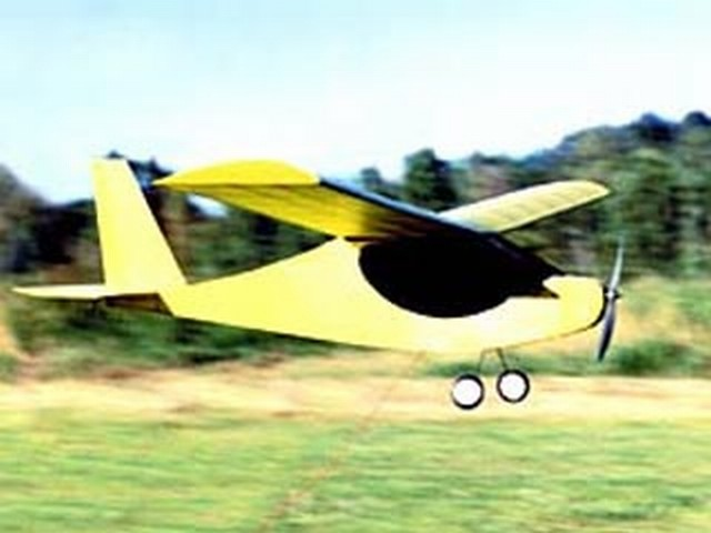 Electric Buttercup (oz7882) by Fred Reese from RCMplans 2000