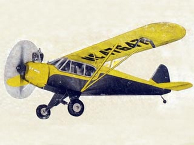 Piper Cub Special - completed model photo