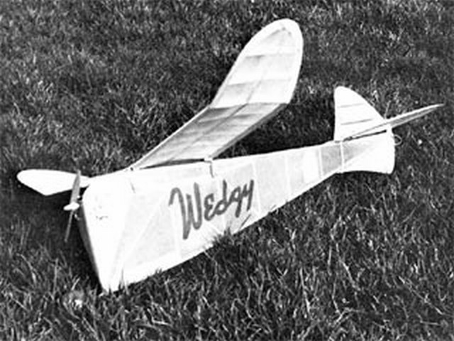 Wedgy (oz8334) by Bob Stalick from American Aircraft Modeler 1974