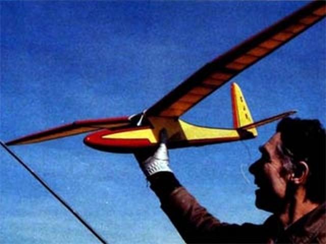 Gamma Gull (oz8547) by Gordon Rae from Model Airplane News 1986
