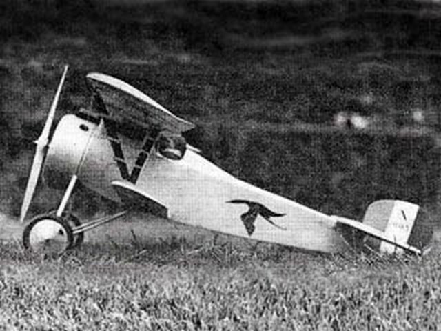 Nieuport 17 - completed model photo