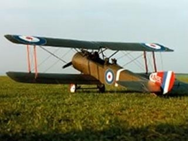 Sopwith 1-1/2 Strutter - completed model photo