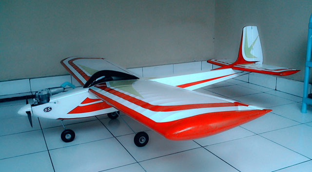 Senior Falcon - oz6137 - IMadeSupena