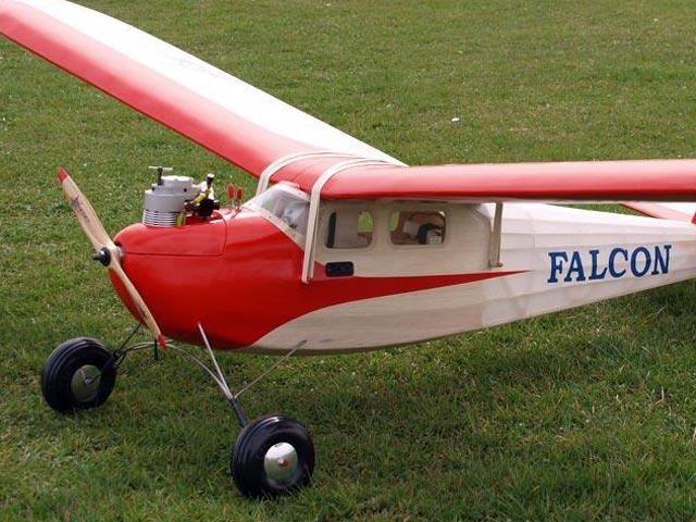 Falcon - oz908 - DieterF