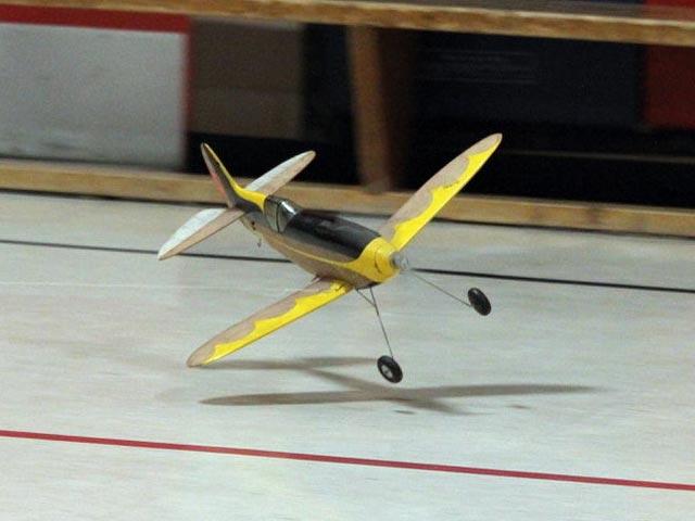 Shark P-60 - oz955 - Peter Smith