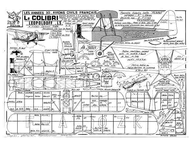 Colibri L3 (oz1006) by Emmanuel Fillon