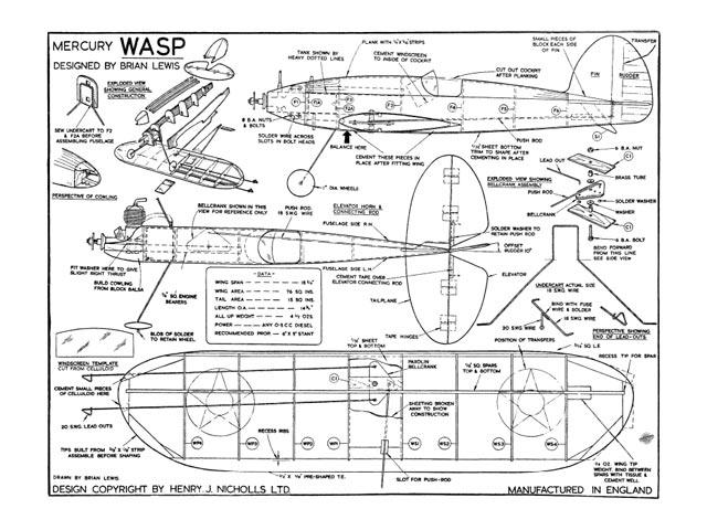 Wasp - 10901