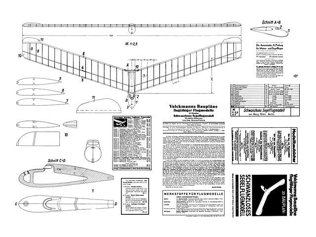 Schwanzloses Segelflugmodell - 11098