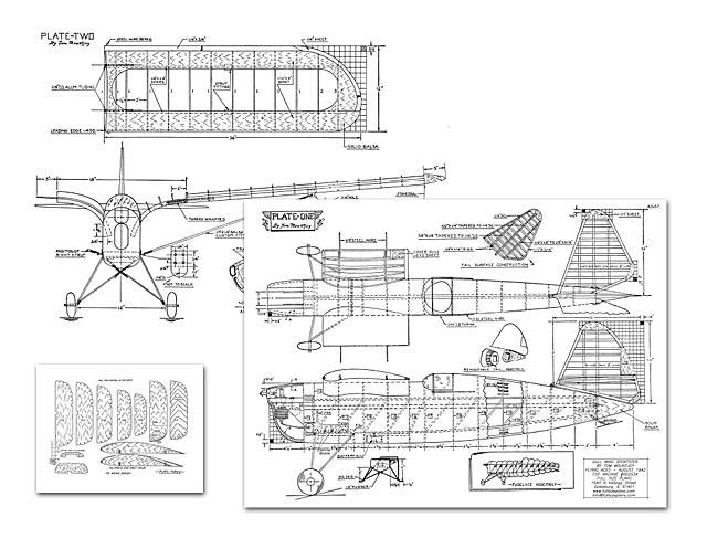 Gull Wing - 3180