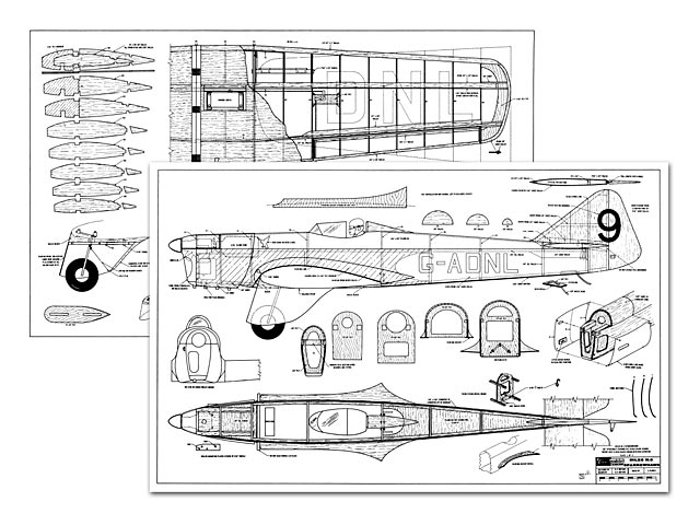 Miles Sparrowhawk - 7872