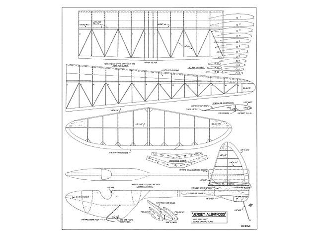 Jersey Albatross - 8468