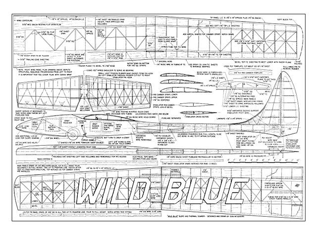 Wild Blue - 8596
